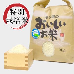 特別栽培米コシヒカリ精米