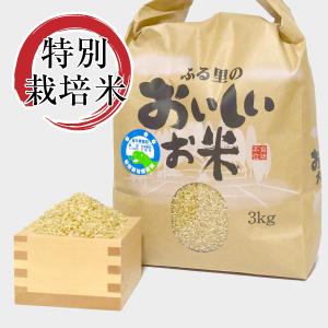 特別栽培米コシヒカリ玄米
