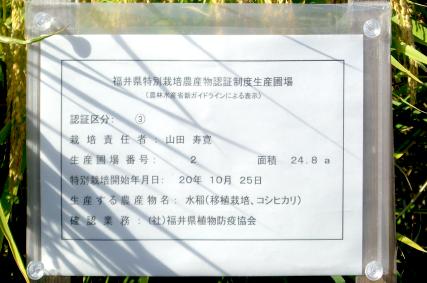 福井県認証特別栽培米:減農薬・無化学肥料栽培圃場