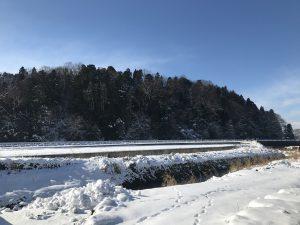 雪の中で働くトラクター